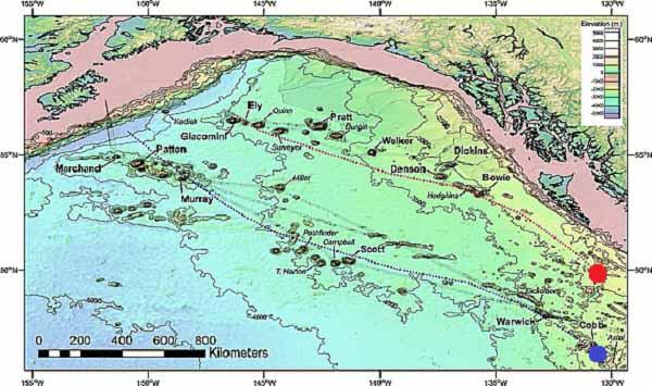 Батиметрическая карта залива Аляска, показывающая положение цепей подводных гор Кадьяк-Bowie и Кобб
